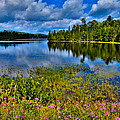 Lake Abanakee At Indian Lake New York by David Patterson