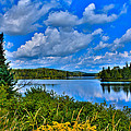 Lake Abanakee - Indian Lake New York by David Patterson