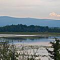 Lake Along Klondike Highway-yt by Ruth Hager