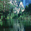 Lake And Trees, California by Panoramic Images