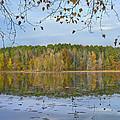 Lake Bailey Petit Jean State Park by Tim Fitzharris