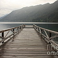 Lake Crescent Dock by Carol Groenen