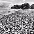 Lake Erie Coast Black And White by Dan Sproul