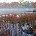 Lake Fog At Dawn by Trever Miller