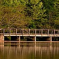 Lake Forest Bridge by Maria Urso