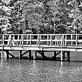 Lake Greenwood Pier by Tara Potts