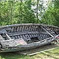 Lake Huron Relic by Susan Wyman