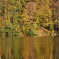 Lake In Autumn by Alliyah Phillips