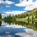 Lake Irene by Robert Yone