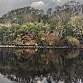 Lake Isle Of Inishfree 2 by Michael David Murphy
