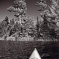 Lake Kayaking Bw by Steve Gadomski
