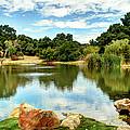 Lake Lucky by Bob Hislop