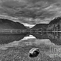 Lake Macdonald In Grey by James Anderson