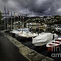 Lake Maggiore Boats 1 by Timothy Hacker