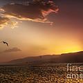 Lake Mead Sunrise by Robert Bales