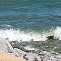 Lake Michigan Shore by Debbie Hart
