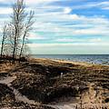Lake Michigan Shoreline by Lauren Radke