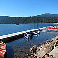 Lake Of The Woods Boat Harbor by Debra Thompson