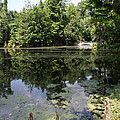 Lake On The Magnolia Plantation With White Bridge by Christiane Schulze Art And Photography