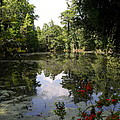 Lake On The Plantation by Christiane Schulze Art And Photography