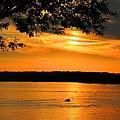 Lake Panarama Sunset by Bob Hislop
