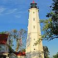 Lake Park Light House 2 by Susan McMenamin