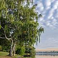 Lake Quannapowitt In Massachusetts  by Pat Lucas