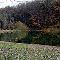 Lake Reflection by Ilir Papavangjeli