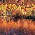 Lake Reflection In Fall 2 by OLena Art Brand