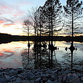 Lake Reflections At Sunset by April Copeland