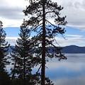 Lake Reflections At Tahoe by Kristina Lammers