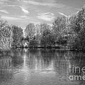 Lake Reflections Mono by Jeremy Hayden