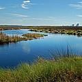 Lake Shelby Daytime  by Michael Thomas