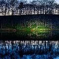 Lake Shore by Alexey Stiop