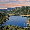 Lake Sonoma - California by Yefim Bam