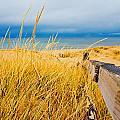 Lake Superior Beach by John McGraw
