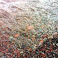 Lake Superior Shore by Sheri Nelson