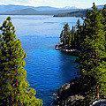 Lake Tahoe From The Rubicon Trail by Frank Wilson