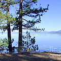 Lake Tahoe In The Morning by Mary Deal