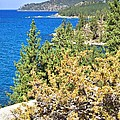 Lake Tahoe Shoreline by Gordon Elwell