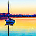 Lake Taupo Sailboat by Catherine Snowden