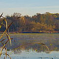 Lake Towhee In Autumn by Bill Cannon