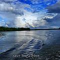 Lake Tuscaloosa by Bonita Moore