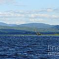 Lake Umbagog Choppy Waters by Neal Eslinger