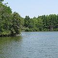 Lake View by Eric Noa