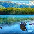 Lake View Of Mount Saint Helens  by Susan Garren