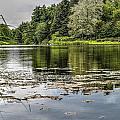 Lake View by Patrick  Warneka
