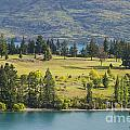 Lake Wakatipu And Queenstown Golf Course by Bob Phillips