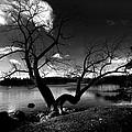 Lake Windermere by Paul Sutcliffe