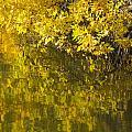 Lake Winona Autumn 12 by John Brueske